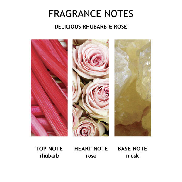 MOLTON BROWN Delicious Rhubarb & Rose Hand Lotion 300 ml - 4