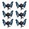 Dynatron Mini pinces à cheveux butterfly Bleu