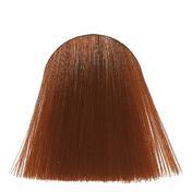 dusy professional Color Mousse 6/0 Dunkelblond, 200 ml