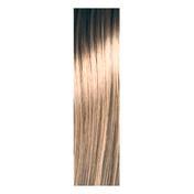 pH Argan & Keratin Color 55/0 Kaltes Hellbraun, Tube 100 ml