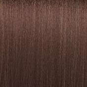 Basler Color Creative Premium Cream Color 6/01 dunkelblond natur asch, Tube 60 ml