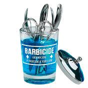 KING RESEARCH BARBICIDE Desinfektionsglas Klein, 120 ml