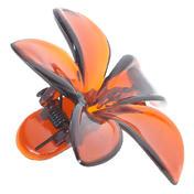 H+B Italia Barrette fleur Havane