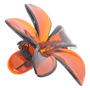 H+B Italia Seitenspange Blüte Havanna