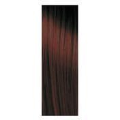 pH Argan & Keratin Color 4.2 Braun Violett, Tube 100 ml