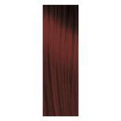 pH Argan & Keratin Color 4.62 Braun Violett Rot, Tube 100 ml