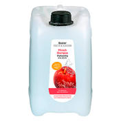 Basler Pfirsich Shampoo Kanister 5 Liter