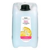 Basler Zitronen Spülung Kanister 5 Liter