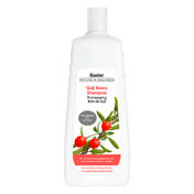 Basler Goji bessen shampoo Economy fles 1 liter