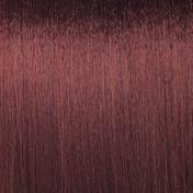 Basler Color Schaumfestiger Palisander, Aerosoldose 200 ml