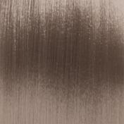 Basler Color 2002+ Cool Reflections .36H Gold Violett Tube 60 ml