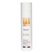 dusy professional Repair Shampoo 250 ml