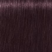 Schwarzkopf IGORA ROYAL Opulescence 3-19 Dunkelbraun Cendré Violett, 60 ml