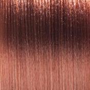 Basler Color Creative Cremehaarfarbe 8/3 hellblond gold, Tube 60 ml